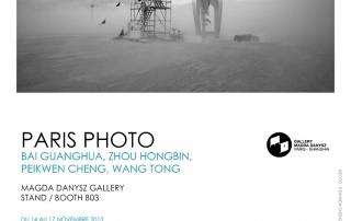 Paris Photo 2013 - Galerie Magda Danysz - Peikwen Cheng
