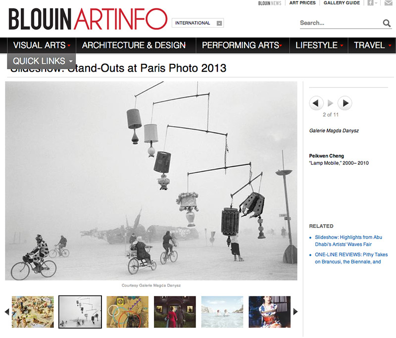 Standouts of Paris Photo 2013