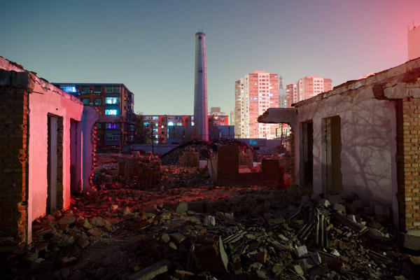 Rising from the Ashes from the series Gai by Peikwen Cheng
